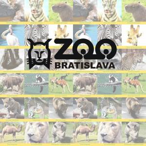 ZOO Bratislava pexeso
